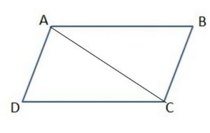 grade 4 chapter 10 Lines, Rays, and Angles image 2 559