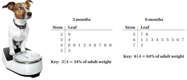Big Ideas Math Answer Key Grade 6 Chapter 10 Data Displays 1
