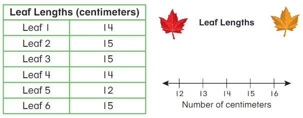 Big Ideas Math Answers 2nd Grade Chapter 13 Represent and Interpret Data 13.6 6