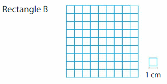 Big Ideas Math Answers 3rd Grade Chapter 15 Find Perimeter and Area 110