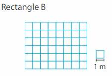 Big Ideas Math Answers 3rd Grade Chapter 15 Find Perimeter and Area 173