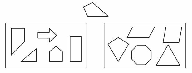 Big Ideas Math Answers Grade 4 Chapter 14 Identify Symmetry and Two-Dimensional Shapes 151