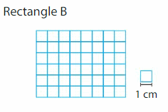 Big Ideas Math Solutions Grade 3 Chapter 15 Find Perimeter and Area 95