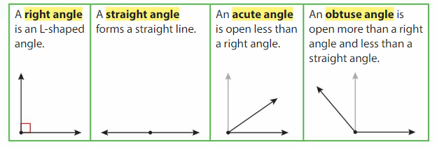 Big Ideas Math Solutions Grade 4 Chapter 13 Identify and Draw Lines and Angles 27