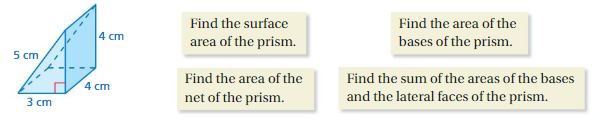 Big Ideas Math Answer Key Grade 7 Chapter 10 Surface Area and Volume 10.1 7