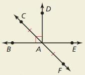 Big Ideas Math Answers Geometry Chapter 1 Basics of Geometry 187