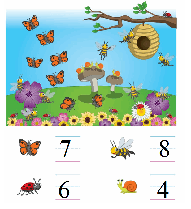 Big-Ideas-Math-Book-Grade-K-Answer-Key-Chapter 3-Count-and-Write-Numbers-6 to 10-Lesson 3.6 -Think and Grow-Modeling Real Life