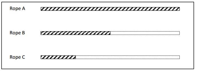 Engage NY Math Grade 3 Module 5 Lesson 13 Problem Set Answer Key 2