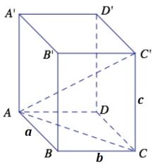 Eureka Math Geometry Module 3 Lesson 5 Problem Set Answer Key 13