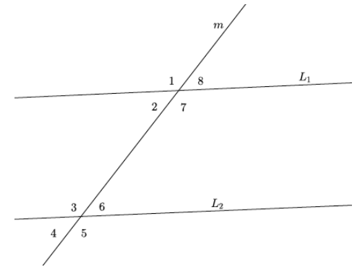 Eureka Math Grade 8 Module 2 Lesson 12 Exit Ticket Answer Key 20