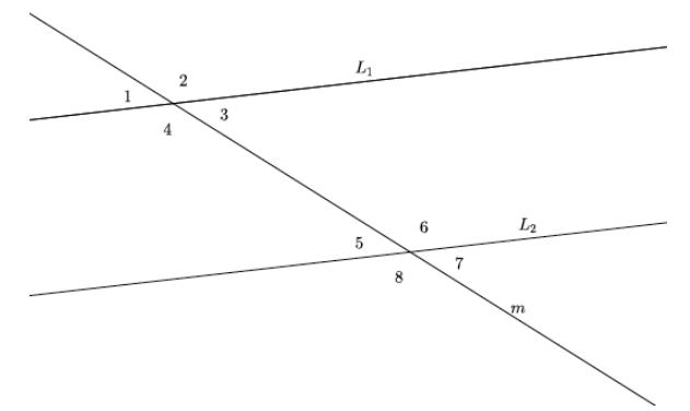 Eureka Math Grade 8 Module 2 Lesson 12 Exploratory Challenge Answer Key 3