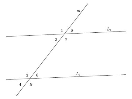 Eureka Math Grade 8 Module 2 Lesson 12 Problem Set Answer Key 50