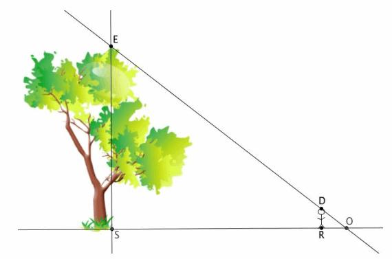 Eureka Math Grade 8 Module 3 Lesson 12 Problem Set Answer Key 50