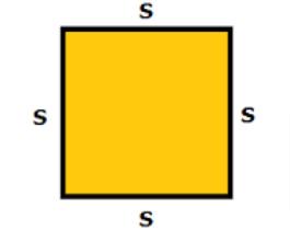 Square Perimeter