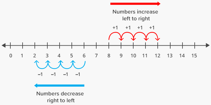 Whole Numbers on the Number Line