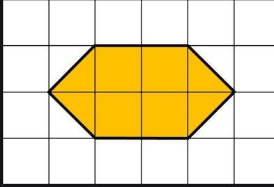 area using square paper example5