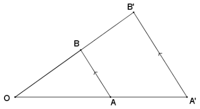 Eureka Math Geometry Module 2 Lesson 4 Opening Exercise Answer Key 9