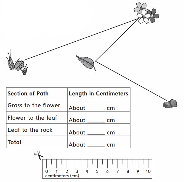 Everyday Math Grade 2 Home Link 4.11 Answer Key 40.2