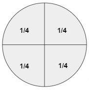 Area Model of Fraction Representation