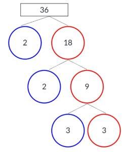 Factor Tree img_6