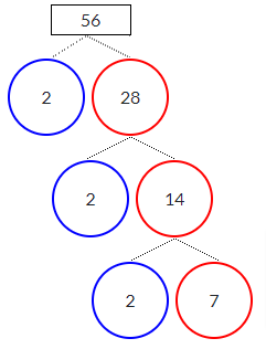 Factor Tree of 56