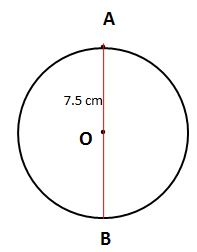 Circle Worksheet Question and answer